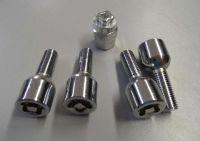 Bezpečnostní šroub kovový M12 x 1,5 x 29 mm, kulové