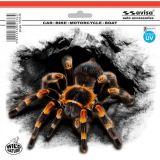 SAMOLEPÍCÍ DEKORY pavouk tarantule 375 x 310 mm s UV filtrem