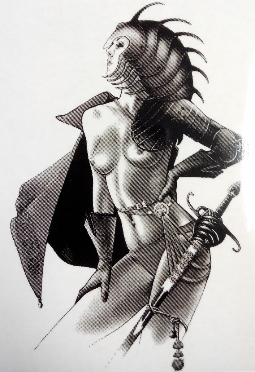 Samolepka ozdobná sexy dívka bojovnice 14,5 x 9,5 cm AVISA